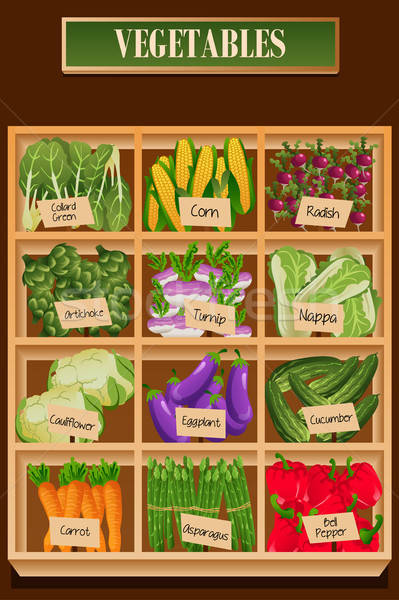 Different Kinds of Vegetables in a Box Stock photo © artisticco
