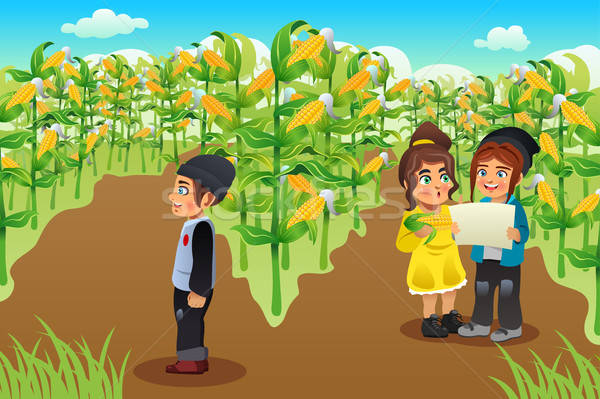 Ninos maíz campo feliz nina nino Foto stock © artisticco