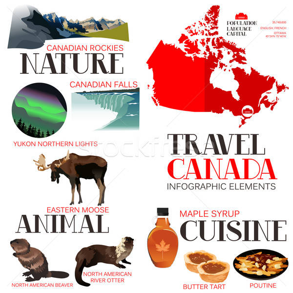 Infographic Elements for Traveling to Canada Stock photo © artisticco