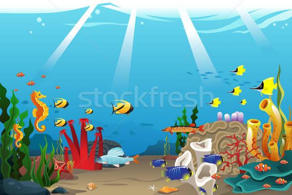 Marine life Stock photo © artisticco
