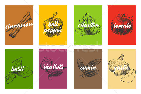 Food Cooking Ingredients Illustration Stock photo © artisticco