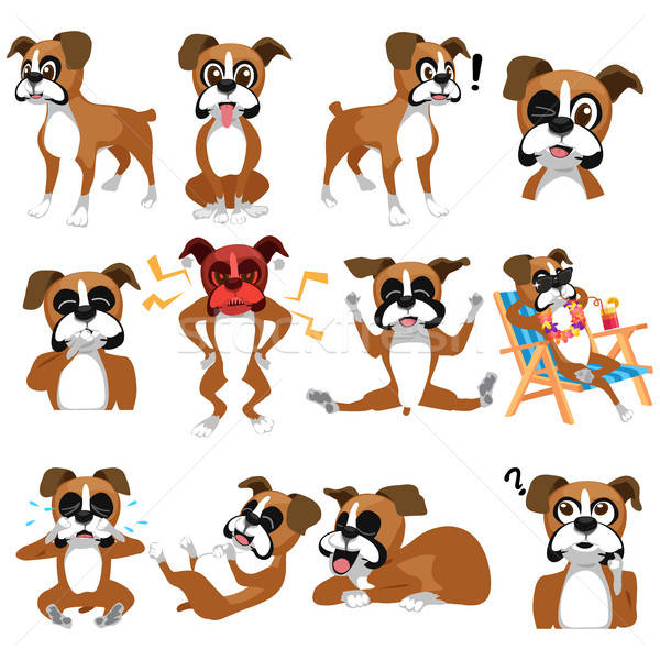 Боксер собака смайлик рисунок Cartoon Сток-фото © artisticco