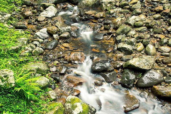 Creek bed at Natural Bridge Stock photo © artistrobd