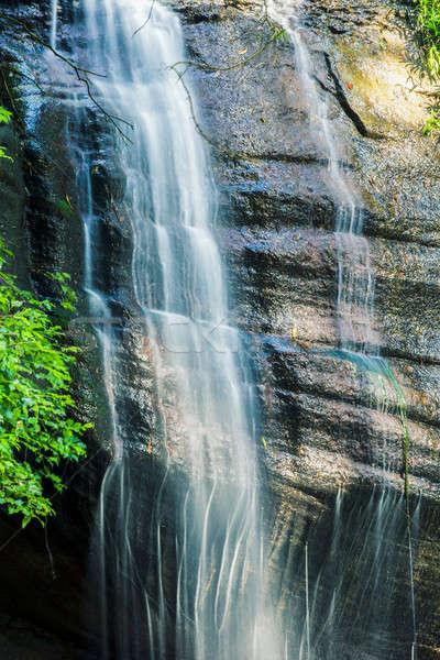 Foto d'archivio: Serenità · sole · costa · Australia · foresta · cascata