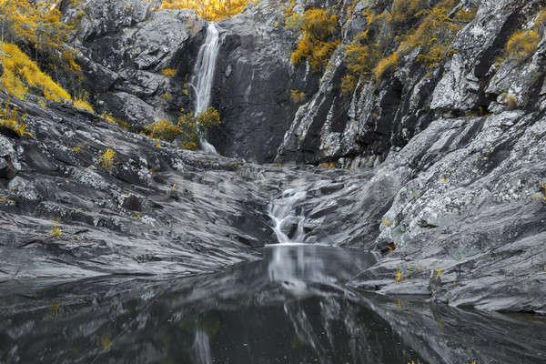 Cedar Creek Falls in Mount Tamborine Stock photo © artistrobd