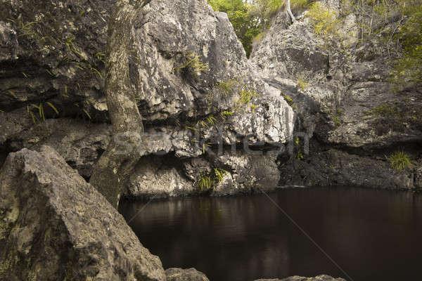Belle cascade soleil côte forêt feuille Photo stock © artistrobd
