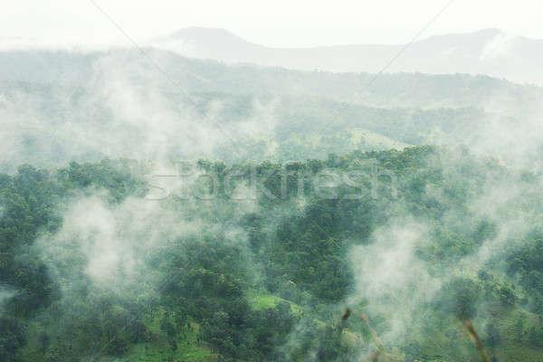 Bomen bergen queensland bewolkt regenachtig dag Stockfoto © artistrobd