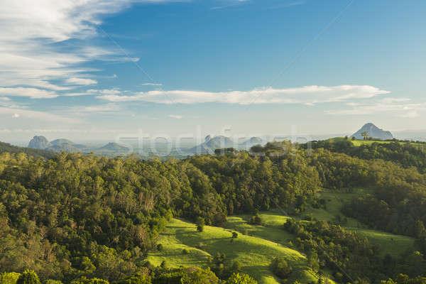 Mount Beerwah in the afternoon sun. Stock photo © artistrobd