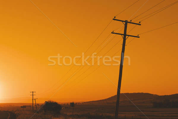Timber power pole Stock photo © artistrobd