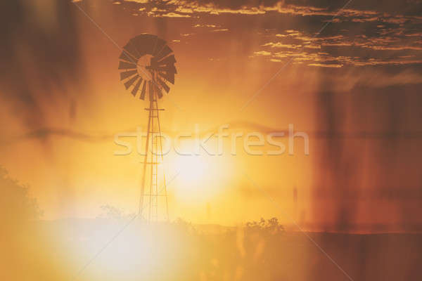 Outback Windmill Stock photo © artistrobd