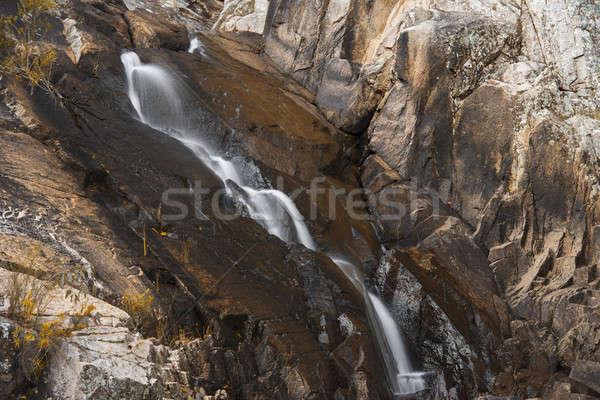 Yuva gün dere park manzara çağlayan Stok fotoğraf © artistrobd