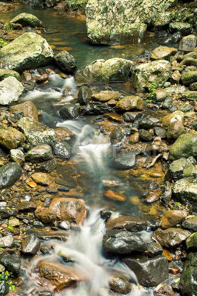 ручей кровать природного моста горные лес Сток-фото © artistrobd
