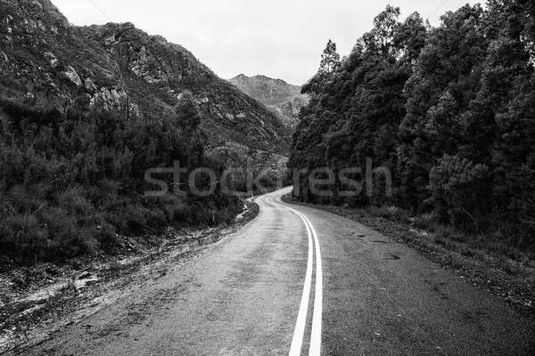 Road and mountains in the Tasmanian countryside. Black and white Stock photo © artistrobd