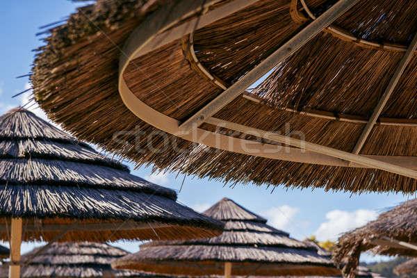 пляж острове день Blue Sky природы фон Сток-фото © artistrobd