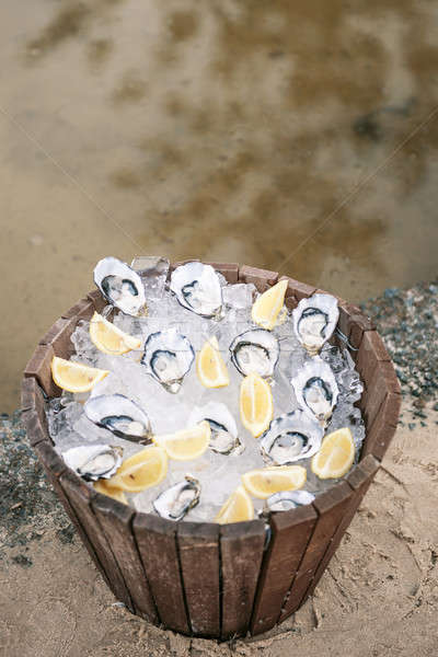 Oysters on ice Stock photo © artistrobd