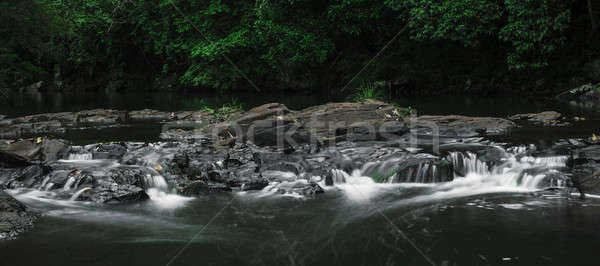 Gardners Falls in Maleny, Sunshine Coast Stock photo © artistrobd