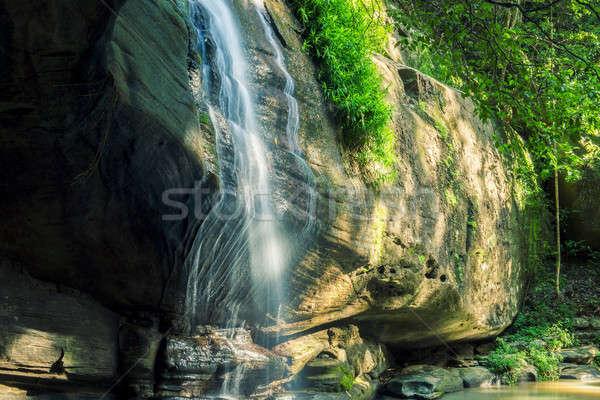 Sereniteit zonneschijn kust Australië bos waterval Stockfoto © artistrobd