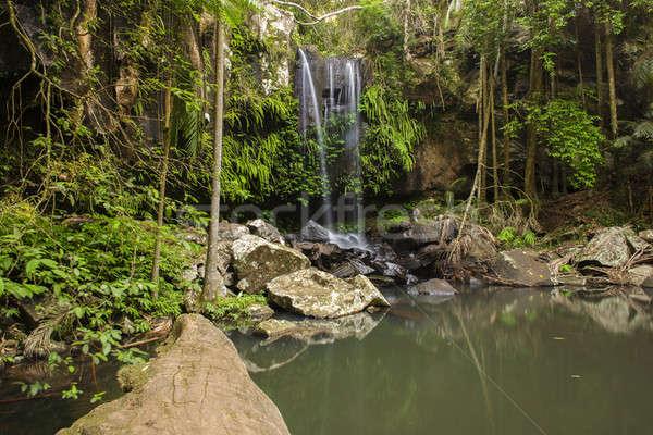 Cascata oro costa foresta foglia bellezza Foto d'archivio © artistrobd
