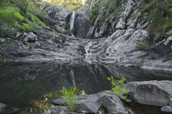 Sedir dere çağlayan park sıçrama taze Stok fotoğraf © artistrobd