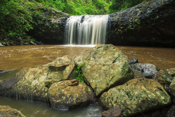 Labbro queensland Australia foglia viaggio cascata Foto d'archivio © artistrobd