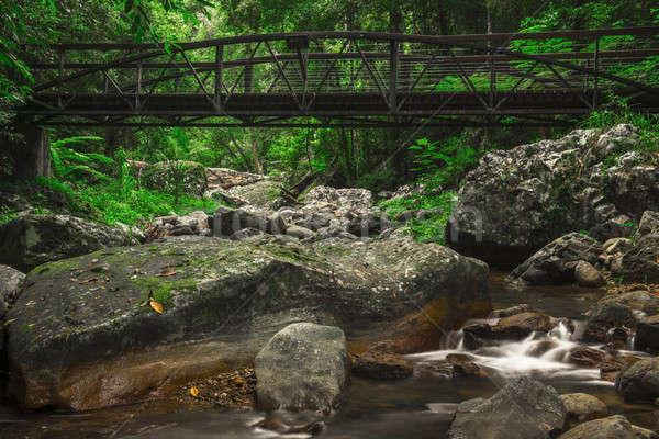 Naturales puente arroyo agua forestales hoja Foto stock © artistrobd