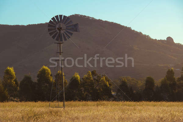 Windmolen brisbane queensland Australië gras oranje Stockfoto © artistrobd