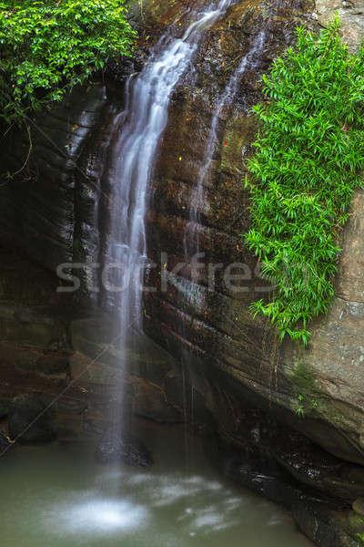Serenità sole costa Australia foresta cascata Foto d'archivio © artistrobd