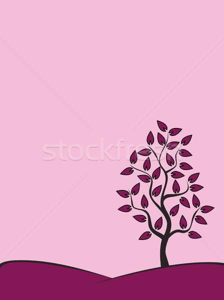 árvore colina elegante pôr do sol nosso sozinho Foto stock © artizarus