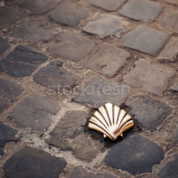 Santiago kagyló Brüsszel Belgium út utca Stock fotó © artjazz