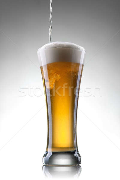 Beer in glass on white background Stock photo © artjazz