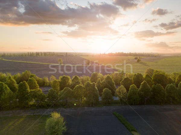 Zdjęcia stock: Panoramiczny · widoku · dziedzinie · wygaśnięcia · Fotografia