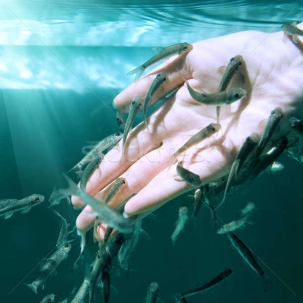 стороны воды рыбы Spa уход за кожей Сток-фото © artjazz
