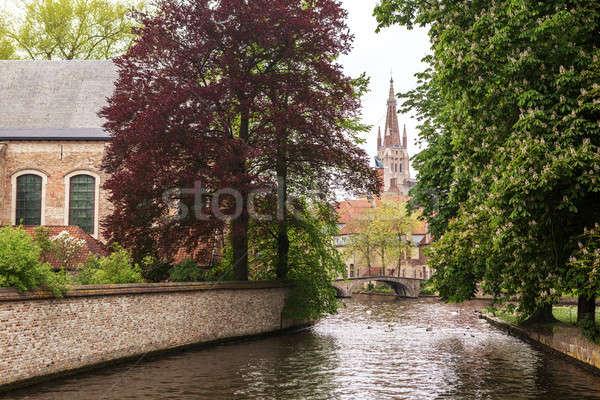 Lake in Begijnhof, Bruges city Stock photo © artjazz