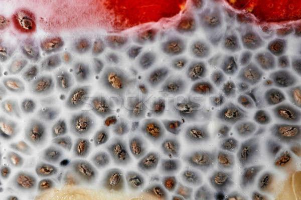 Puding magok bogyók makró lövés mag Stock fotó © artjazz