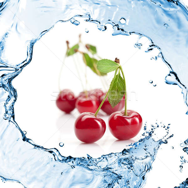 Red cherry with leaves and water splash isolated on white Stock photo © artjazz