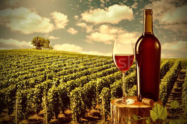 Glass and bottle of red wine against vineyard landscape Stock photo © artjazz