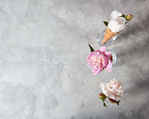 Virágzó ostya üveg szürke nyár bájos Stock fotó © artjazz