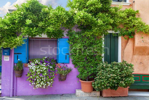 Color house on Burano island near Venice , Italy Stock photo © artjazz
