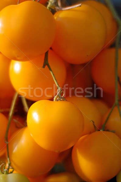 branch of yellow cherry tomato Stock photo © artjazz