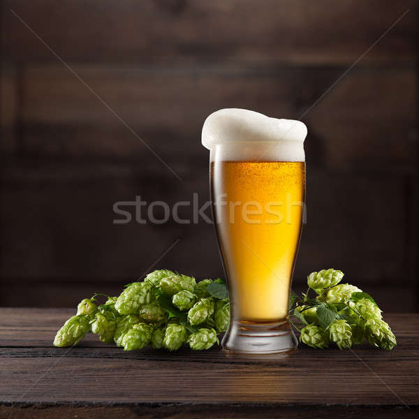 Still life with a glass of beer and hop. Stock photo © artjazz