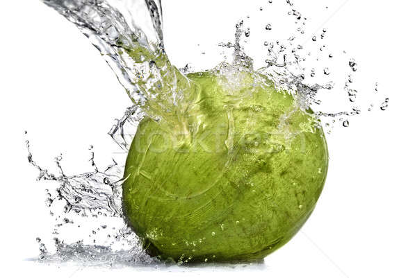 Stock photo: fresh water splash on coconut isolated on white
