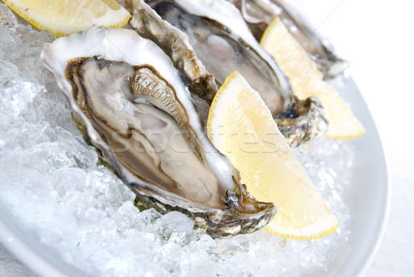 raw oysters with lemon and ice Stock photo © artjazz