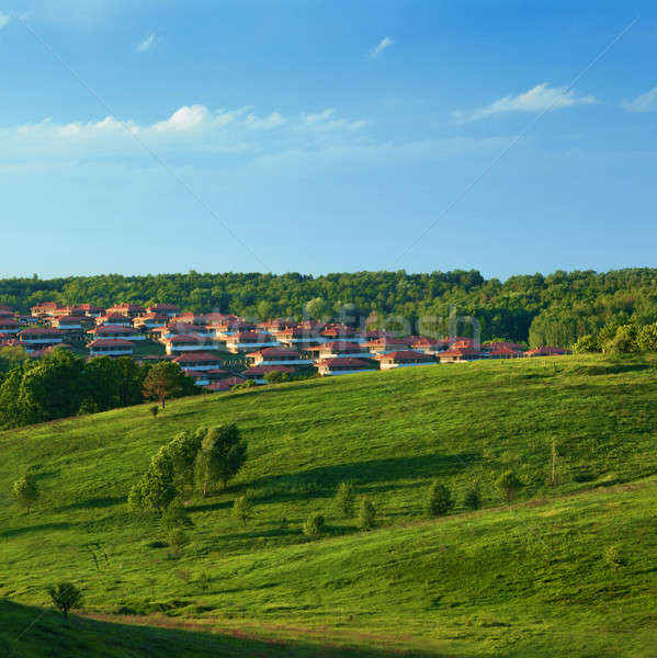 Green meadow against blue sky and small town Stock photo © artjazz