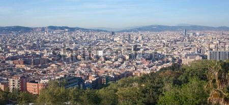 Aves olho ver Barcelona Espanha manhã Foto stock © artjazz