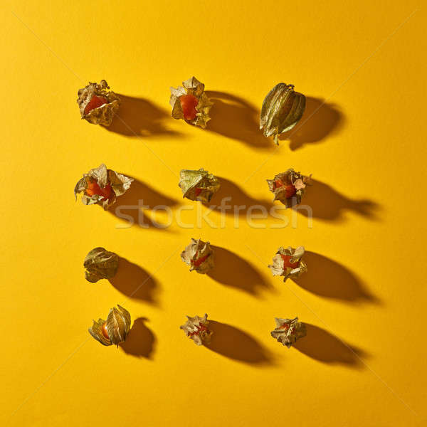 Vista patrón amarillo frutas oscuridad cuadrados Foto stock © artjazz