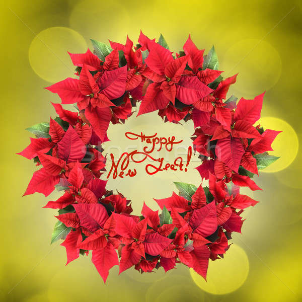 christmas wreath from poinsettia on yellow light background Stock photo © artjazz