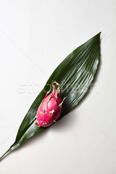 Tropical evergreen leaves with dragon fruit or pitaya isolated on white background. Top view. Stock photo © artjazz