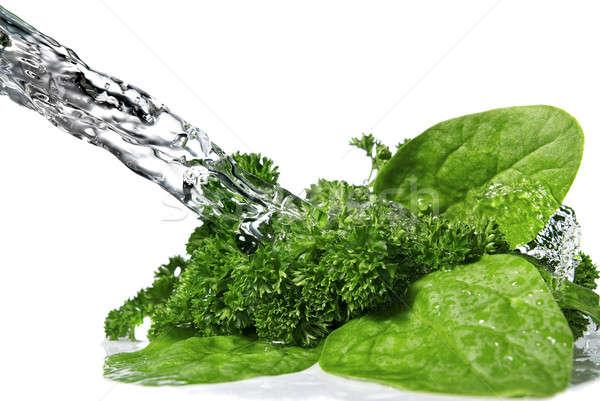 Gocce d'acqua verde spinaci prezzemolo isolato Foto d'archivio © artjazz