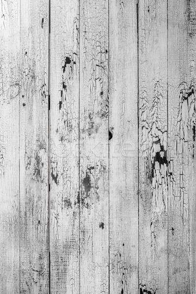 Weiß Holzstruktur Holz Textur Risse Baum Stock foto © artjazz
