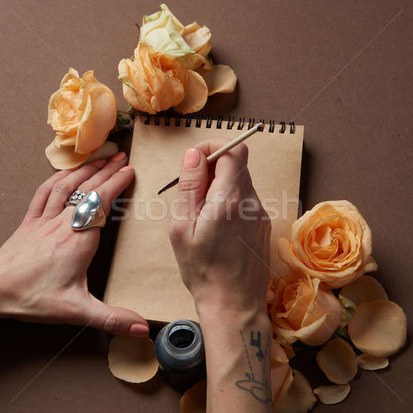 Diary or notebook for ideas and emotions Stock photo © artjazz